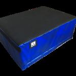 RS plyo box